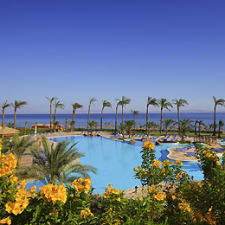 Sol Dahab Red Sea