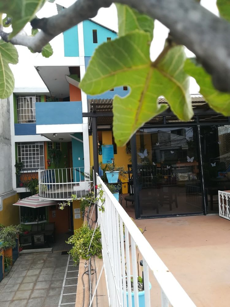 Bed Breakfast Hostal Guatefriends Guatemala Trivago Com
